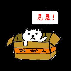 捨て猫(人形)物語