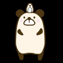 インコとパンダみたいな熊