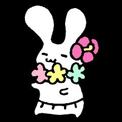 ウサギのオハナちゃん。春夏秋冬のうさぎ
