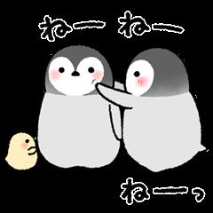 ペンギンきょうだい