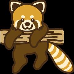 レッサーパンダのレッサーさん