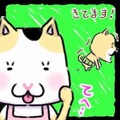 ひげ柴とラブ猫