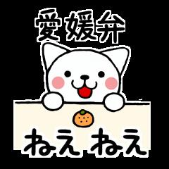 愛媛弁のネコ