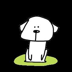 僕、犬です。