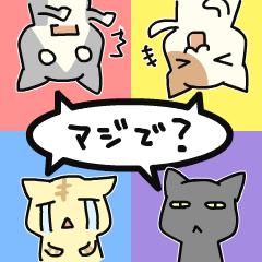 言葉と気持ちが選べるネコ