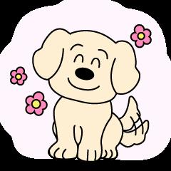 会社犬ラッキー