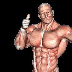 筋肉モリモリ筋次郎クンの日常