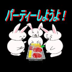 キモかわ ウサギ