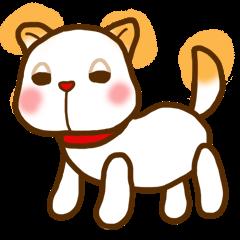 紀州犬帝レオ
