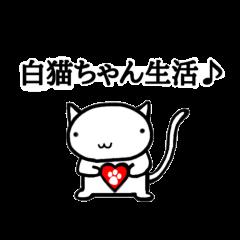 白猫ちゃん生活