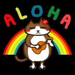 ハワイのSERIの愛猫ViViスペシャル①