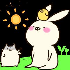 ウサ吉とハム郎とピヨ助。