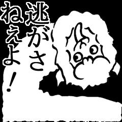 アルパカ先輩マジイケメン