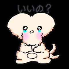ともだちーなトイプードル犬