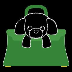 [LINEスタンプ] かばんの中のトイプードル (1)