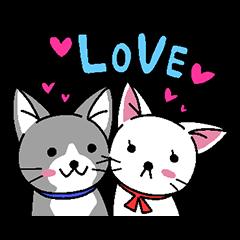[LINEスタンプ] ネコねこカップル物語 (1)