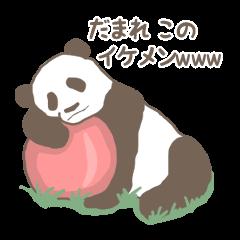 うざいwwwパンダ。