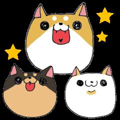 柴犬 ~ゆる敬語~