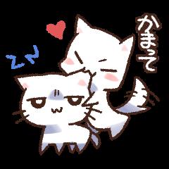 白犬と白猫
