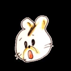 イリナキウサギのイリちゃん