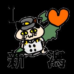 新潟を応援する猫「米六」