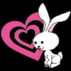 いろいろなウサギ