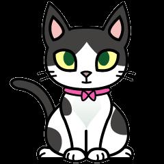 猫ねこコネコ