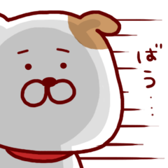 愛犬バウ1