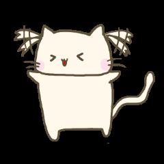 ちょっと変わった猫