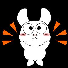いつも元気な子供ウサギ