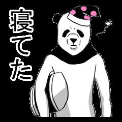 顔だけパンダ