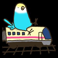 電車でおでかけ with 小鳥