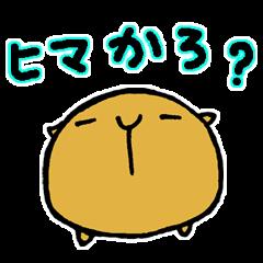 長崎県のカピバラ その3