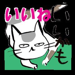 [LINEスタンプ] いのつく仔猫2(あ猫) (1)