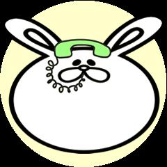 顔面ウサギ。日本語