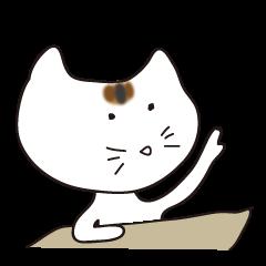 これでもキジトラのネコ