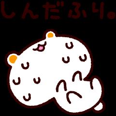 しろくまねこ【ピンチ!セット】
