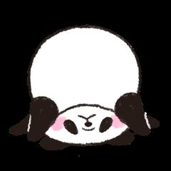[LINEスタンプ] パンダ!たまにクマだ!の基本のスタンプ