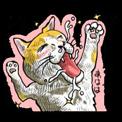 土佐弁をよくしゃべる猫