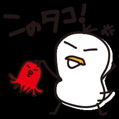 白カモかも。2
