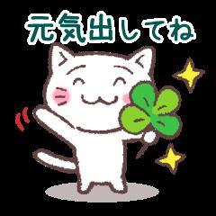 猫と四つ葉のクローバー