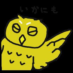 やや上から目線フクロウ