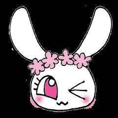 KAWAIIウサギ&リス