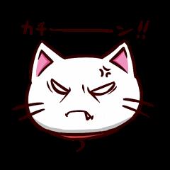 白猫のしゅがー!!<5>
