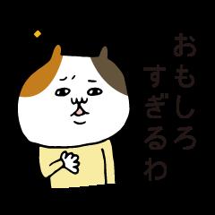 仲いい人マブダチ専用三毛猫
