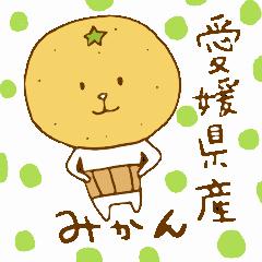 愛媛県産みかん