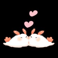 シロウサギウミウシちゃん