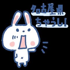 愛知県在住、うさぎのあんこ 1