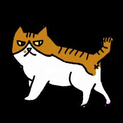 いつでも猫。