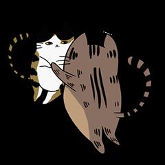Meow Box(humanoid)